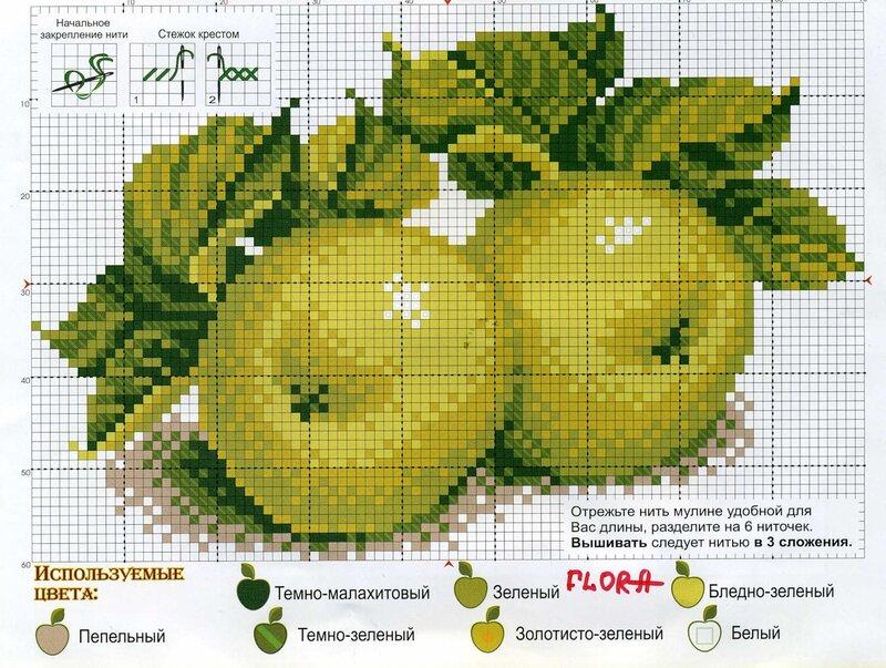 Яблоки 537 - Искусница
