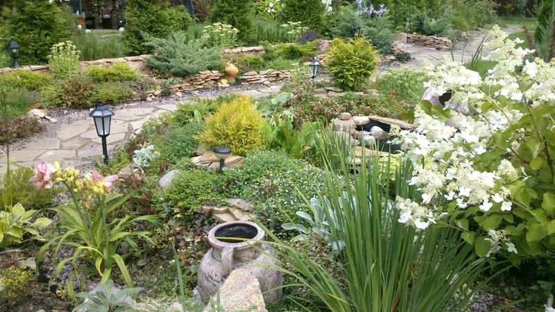 Полезные идеи для дачников и садоводов!