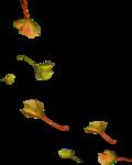 осенний мед (79)