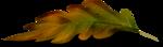 осенние тропинки (40)