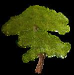 Secret Garden Tree2.png