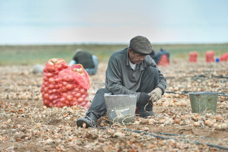 Астрахань. Фотограф Кузьмин