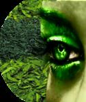 GreenEye2-Mika.png
