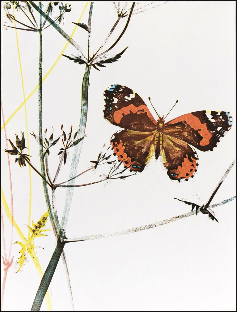 Hans Erni, Histoires naturelles