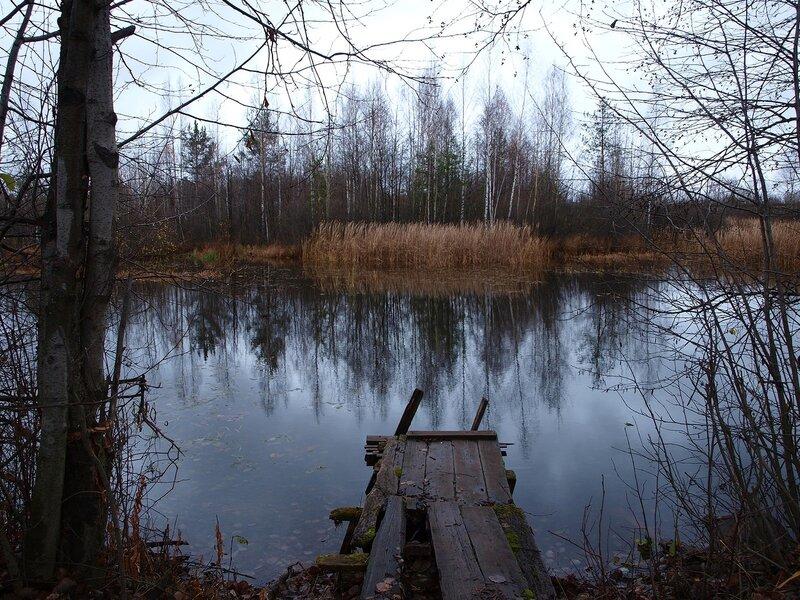 мостки у озера