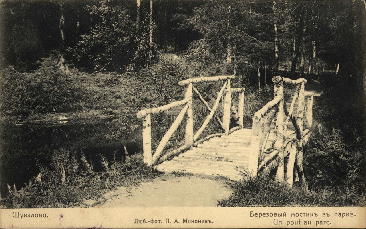 Шувалово. Березовый мостик в парке