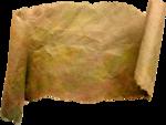 осенние тропинки (68)