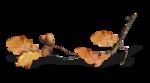 волшебная осень (147)
