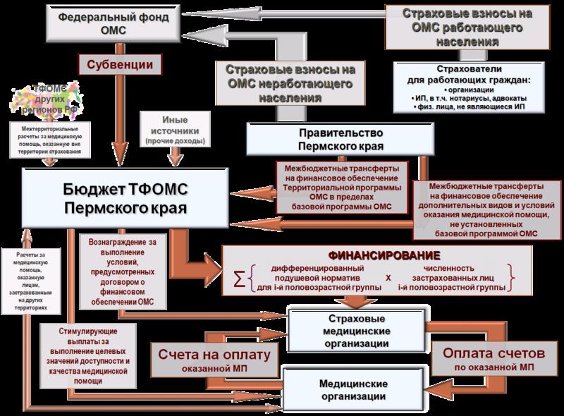 Схема ОМС Пермский край.png