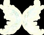 Secret Garden Wings2.png