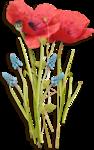 MaryPop_PoppyFields_el (10).PNG