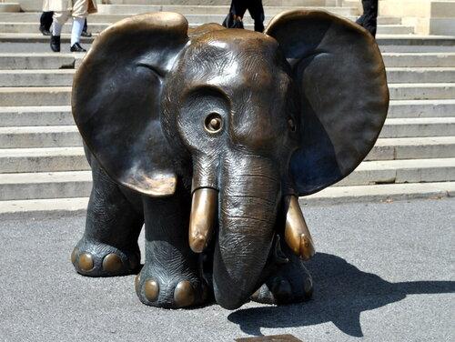 Слоненок.