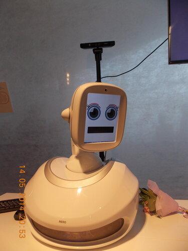 Робот для эмоционального общения