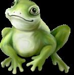 NLD Frog Prince sh.png