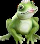 NLD Frog Princess b.png