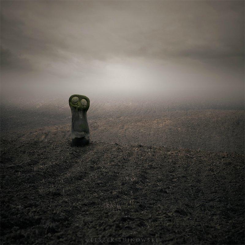 Фотомодуляции от фотографа из Польши Leszek Bujnowski