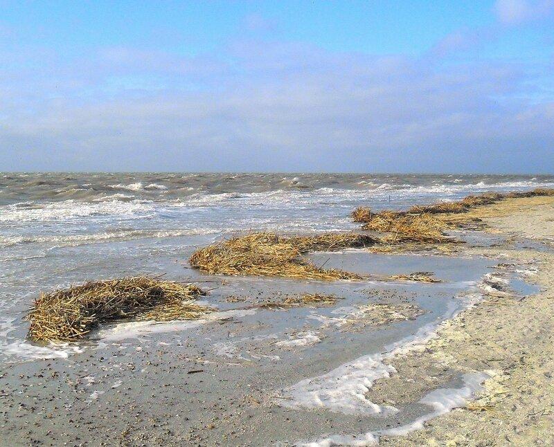 Кромка береговая и дальний горизонт ... SAM_5731 - 1.JPG