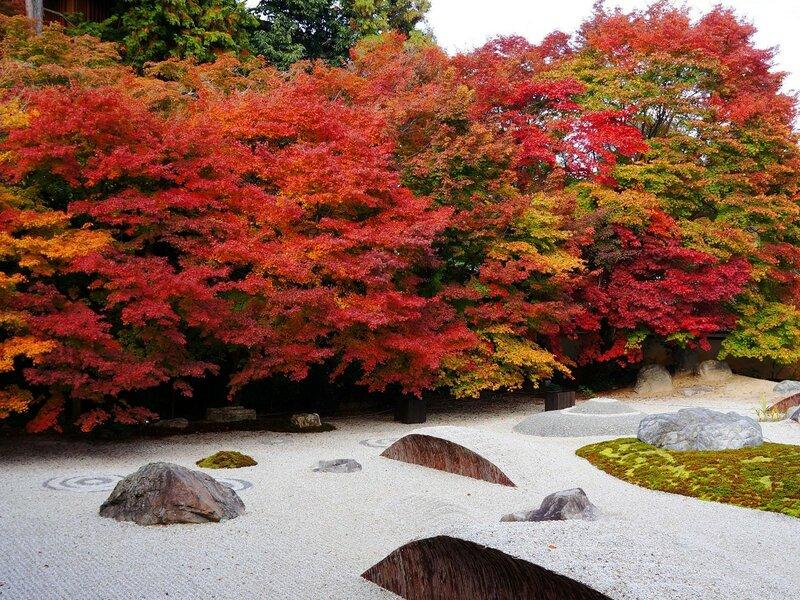 圓光寺の紅葉-京都府-日本