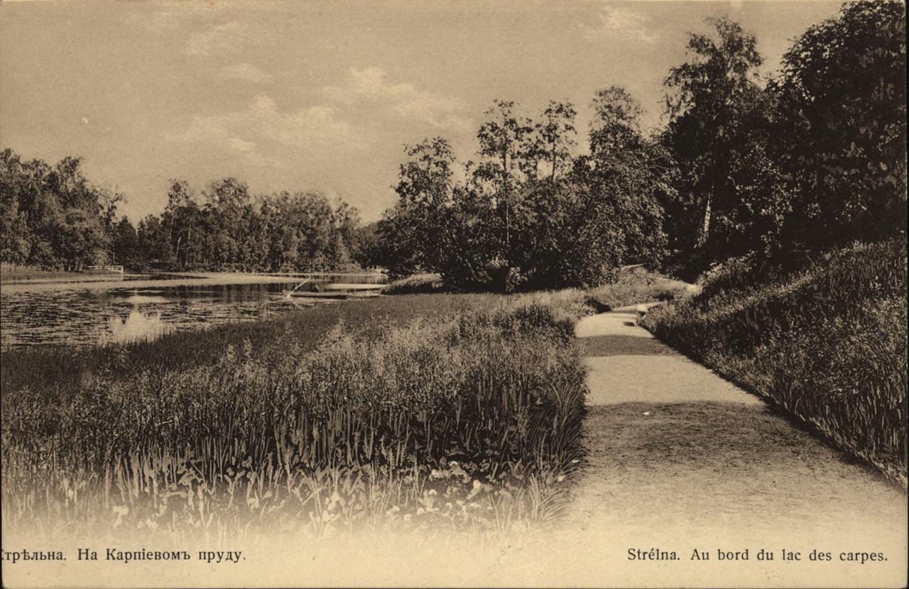 На Карпиевском пруду