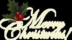 новогодний клипарт (74)