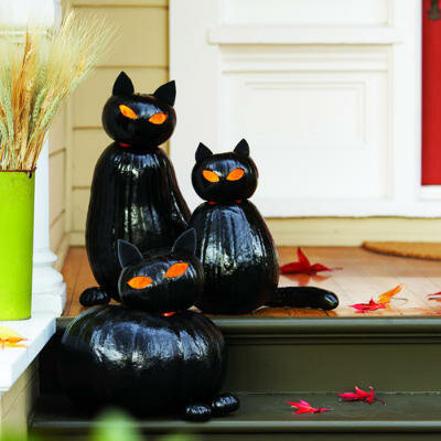 Группа черных котов)