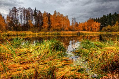 Autumn landscape 05.jpg