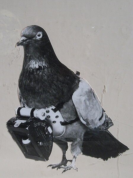 449px-dr_julius_neubronner_patented_a_miniature_pigeon_camera_activated_by_a_timing_mechanism_1903.jpeg