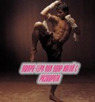 Книга Уширо-гери или удар ногой с разворота