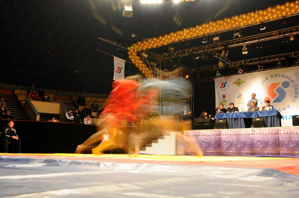 Чемпионат России по боевому самбо