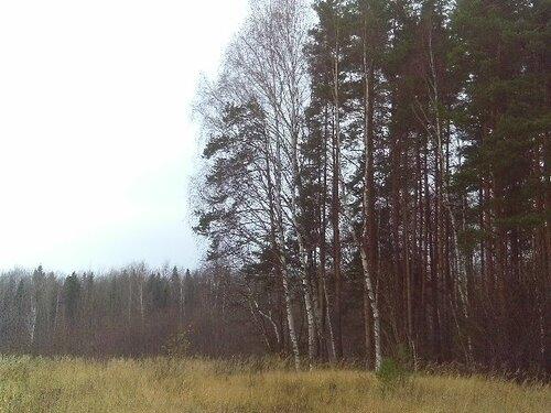 http://img-fotki.yandex.ru/get/5312/96154546.1/0_585a0_a9f09f5b_-1-L.jpg