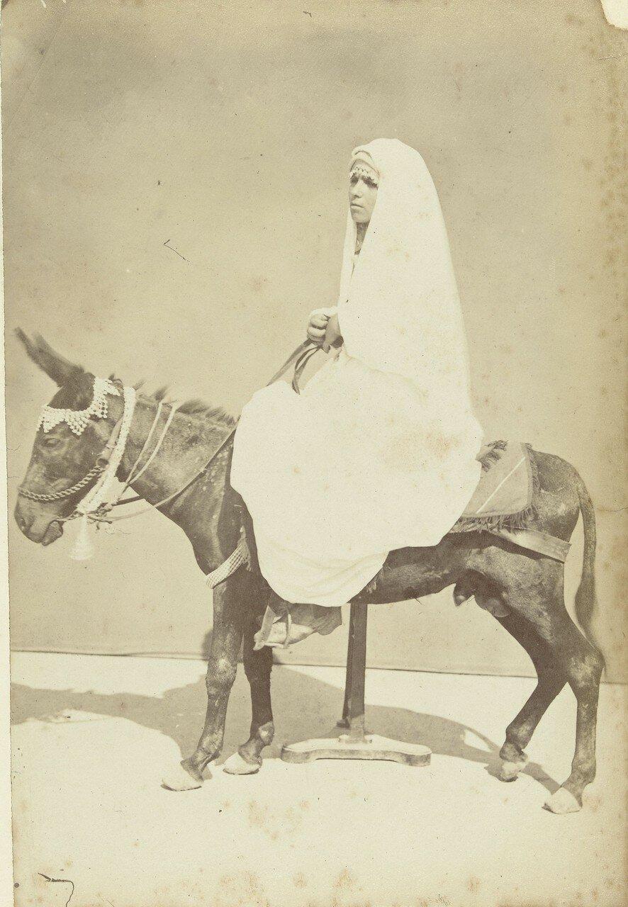 Портрет женщины на осле