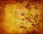Винтажные текстуры - Природа.  Vintage nature textures 5 JPG max...
