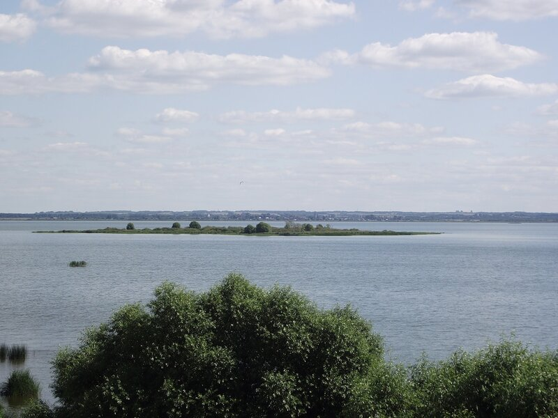 Ростовское озеро Неро покидает рыба.
