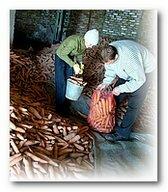 как_хранить_морковь_kak_hranit'_morkov'
