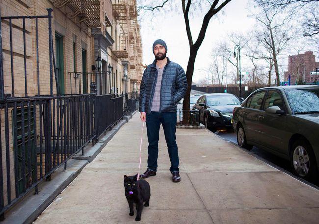 10 Дэвид Уильямс проект «Мужчины и коты».jpg