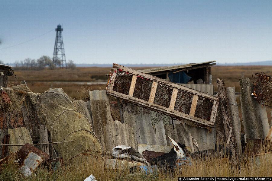 Заложники отравленной земли