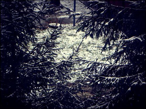 29.10.2011 Первый долгий снег
