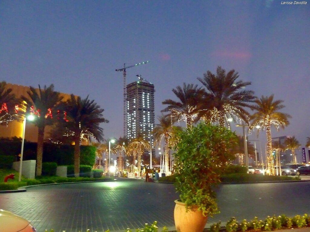 Пальмовая аллея вечером, около торгового центра.