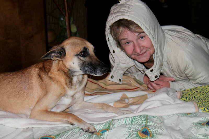 Мулька любит спать на диване, Саратов, 22 ноября 2011 года