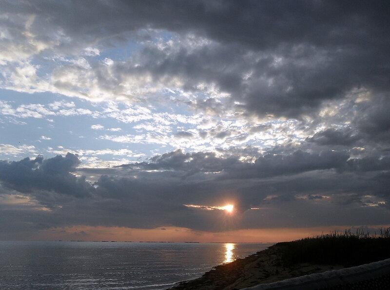 Берег Бейсугского лимана, июнь 2011