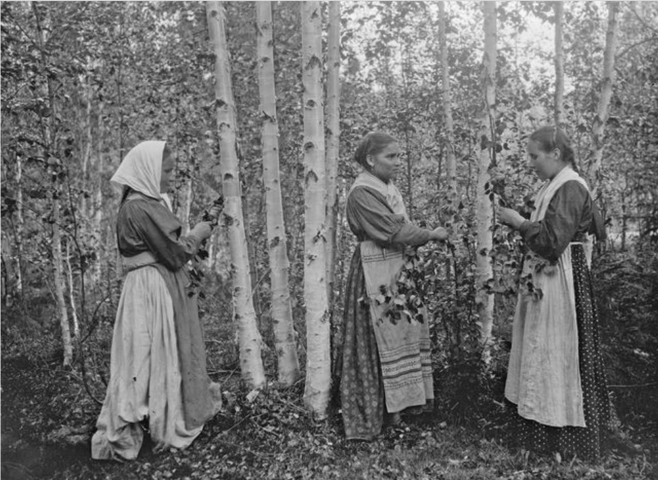 Ухта. Девушки в березовом лесу