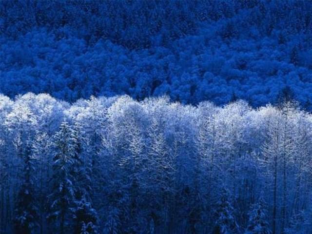 100 самых красивых зимних фотографии: пейзажи, звери и вообще 0 10f591 920d63fd orig