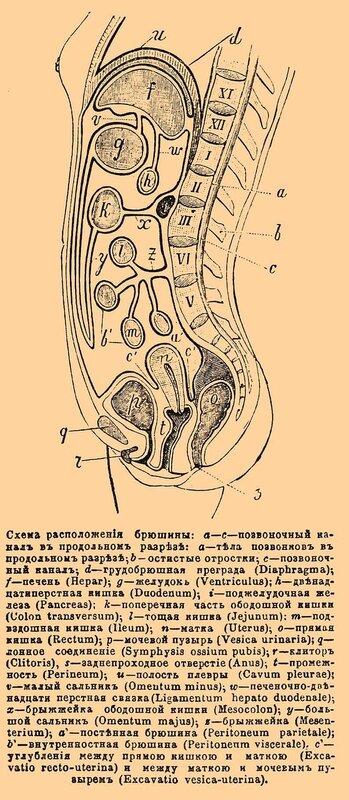 Схема маршруток днепропетровска.