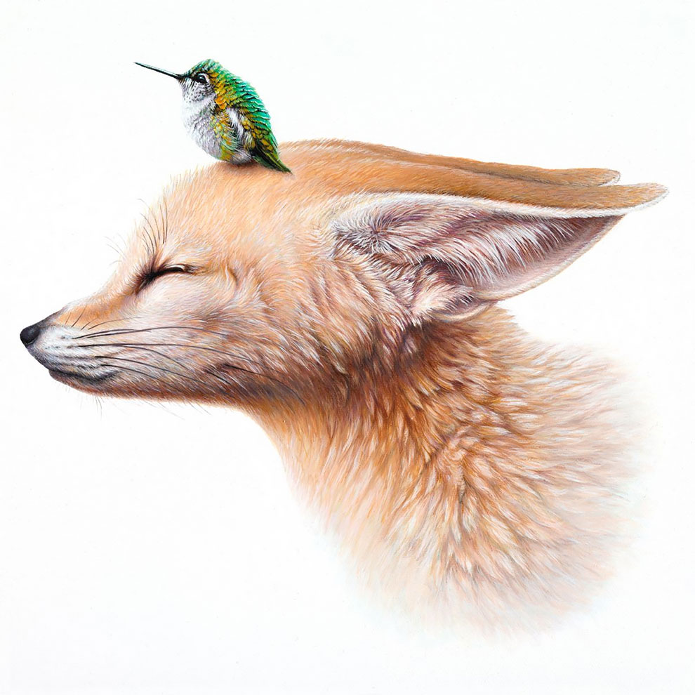 Surreal Animal Illustration by Jacub Gagnon