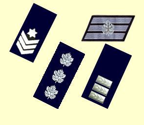 Израильские звания