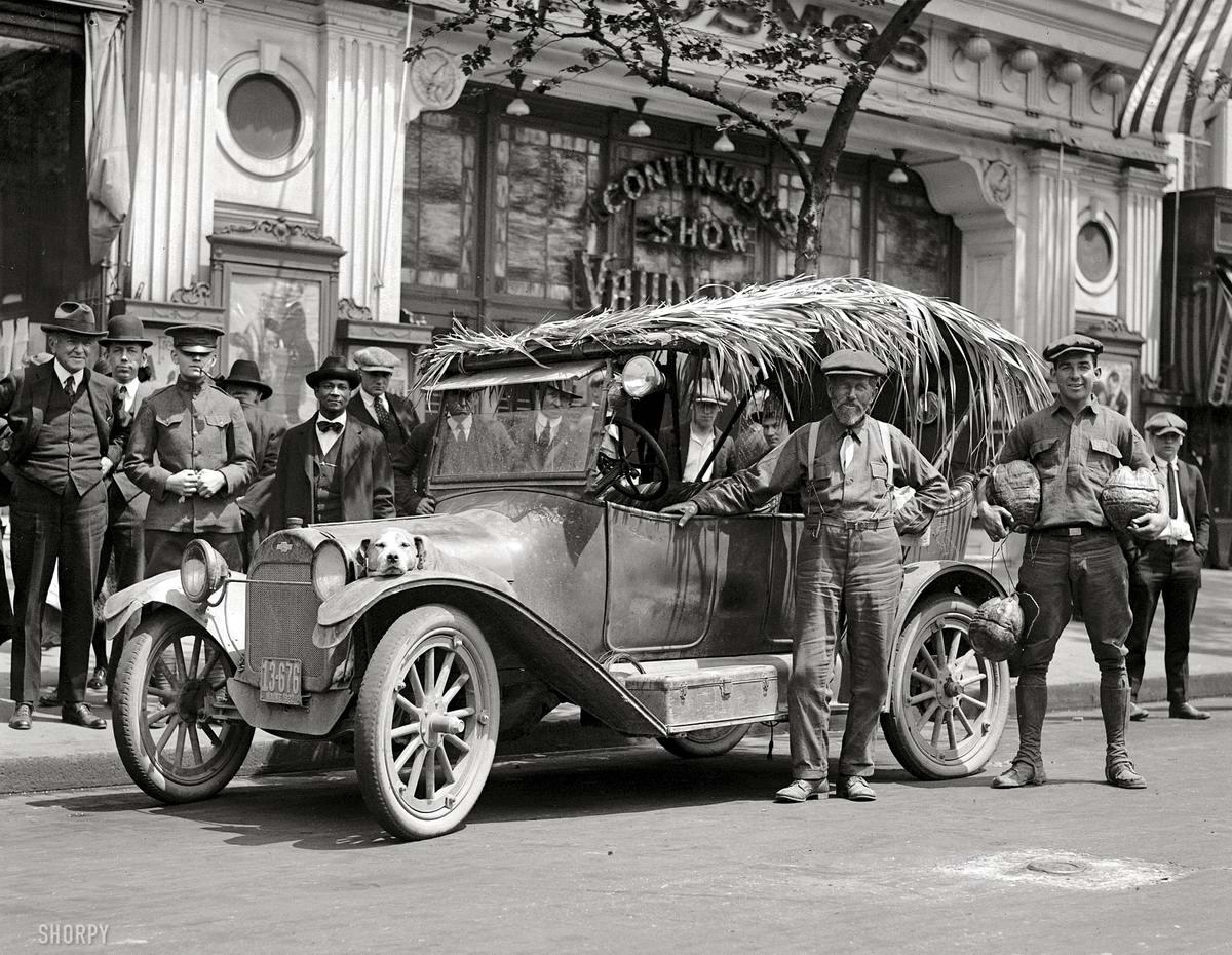 Легковой автомобиль с крышей из тростника (Вашингтон, 1922 год)