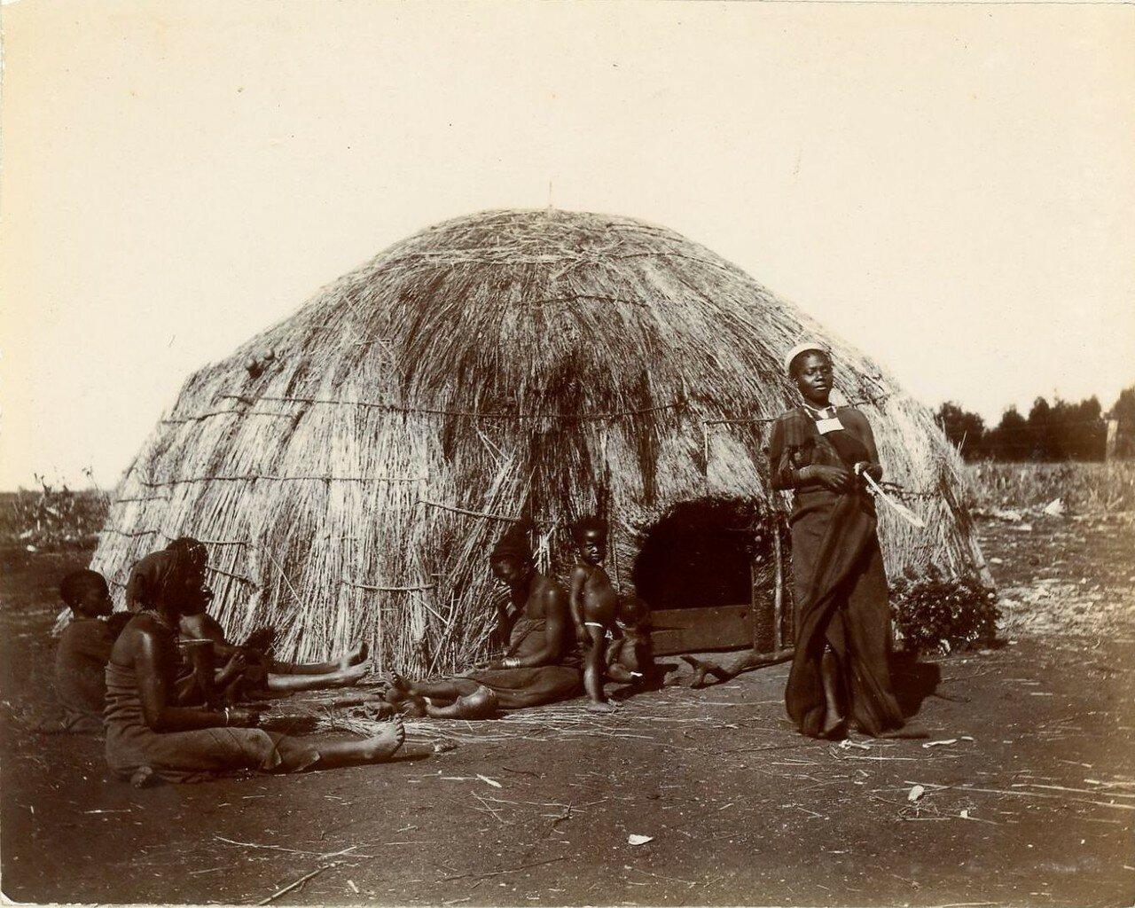 1900. Зулусы из Наталя