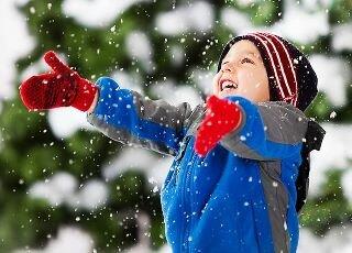 Новогодние каникулы 2012 в Ярославле