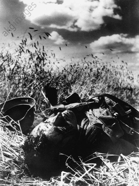 Ostfront/Gefallener Wehrmachtssoldat... - Eastern Front / Fallen German Soldier -