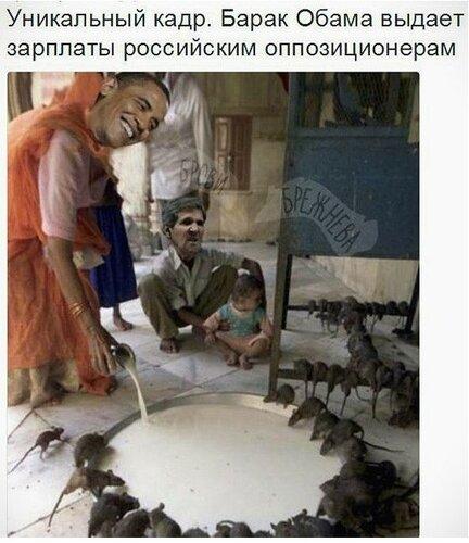 Россия и Запад: Политика в картинках #33